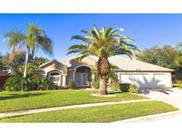 View 742 Killarney Ct Merritt Island FL