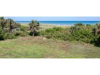 View 3170 N Atlantic Ave # 205 Cocoa Beach FL
