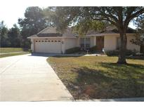 View 33202 Irongate Dr Leesburg FL