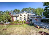 View 15832 Switch Cane St Clermont FL
