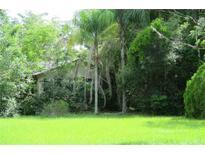 View 1328 E 8Th Ave Mount Dora FL