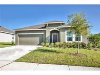 View 3179 Spicer Ave Grand Island FL