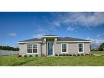 View 224 Goldie St Leesburg FL