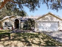 View 812 Elm Forest Dr Minneola FL