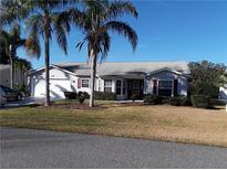 View 25619 Belle Alliance Leesburg FL