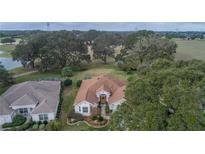 View 17140 Se 91St Lee Ave The Villages FL
