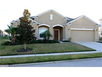 View 3166 Spicer Ave Grand Island FL