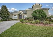 View 4461 Powderhorn Place Dr Clermont FL