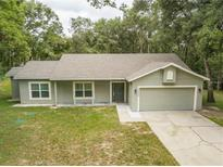 View 30603 Turnberry Ave Sorrento FL