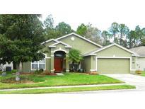 View 3019 Bellflower Way Lakeland FL