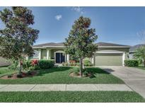 View 2281 Trumpeter Swan Ave Bartow FL