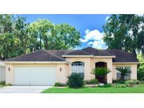 View 4415 Fairway Oaks Dr Mulberry FL