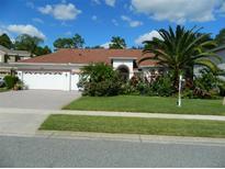 View 14536 Braddock Oak Dr Orlando FL