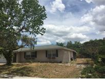 View 6331 Ridgeberry Dr Orlando FL