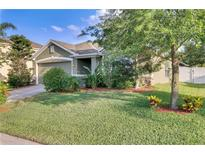View 10948 Lemay Dr Clermont FL