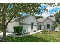 View 11763 Peachstone Ln Orlando FL