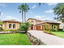 View 8818 Elliotts Ct Orlando FL