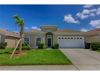 View 8113 Fan Palm Way Kissimmee FL