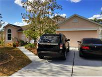 View 317 Loma Del Sol Dr Davenport FL