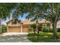 View 7743 Dillsbury Ct Orlando FL