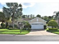 View 2456 Greenwillow Dr Orlando FL