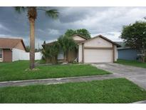 View 5245 Flying Eagle Ln Kissimmee FL
