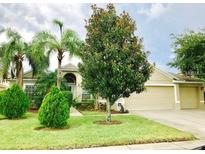 View 3462 Forest Ridge Ln Kissimmee FL