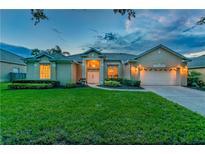 View 10032 Shortwood Ln Orlando FL