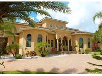 View 17639 County Road 455 Montverde FL