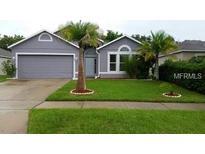 View 522 Grand Royal Cir Winter Garden FL