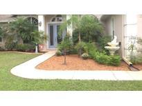 View 29945 Violet Ave Eustis FL