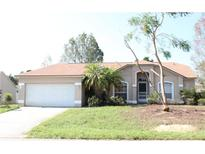 View 314 Oakpark Loop Davenport FL