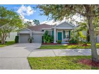 View 10409 Moss Rose Way Orlando FL