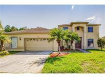 View 14106 Deljean Cir Orlando FL