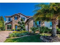 View 8911 Blue Mesa Dr Windermere FL