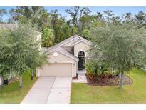 View 10181 Oak Crest Rd Orlando FL