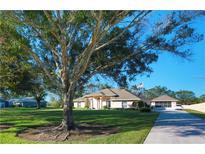 View 3940 Lakeview Acres Rd Saint Cloud FL