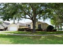 View 23015 Oak Prairie Cir Sorrento FL
