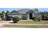 View 13537 Biscayne Grove Ln Grand Island FL