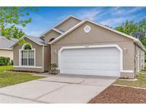 View 13612 Springtide Ct Orlando FL