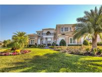 View 6201 Tiroco Way Windermere FL