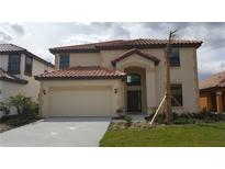 View 2649 Tranquility Way Kissimmee FL