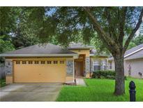 View 8226 Baywood Vista Dr Orlando FL