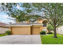 View 8567 Baywood Vista Dr Orlando FL