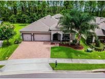 View 15414 Sandfield Loop Winter Garden FL