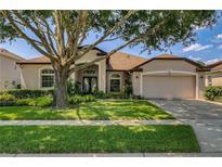 View 7919 Bayflower Way Orlando FL