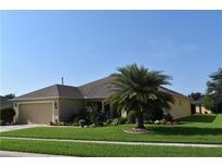 View 26620 Augusta Springs Cir Leesburg FL