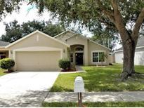 View 8120 Woodsworth Dr Orlando FL