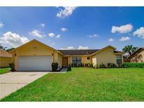 View 9920 Earlston St Orlando FL