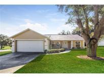 View 856 Arbor Hill Cir Minneola FL